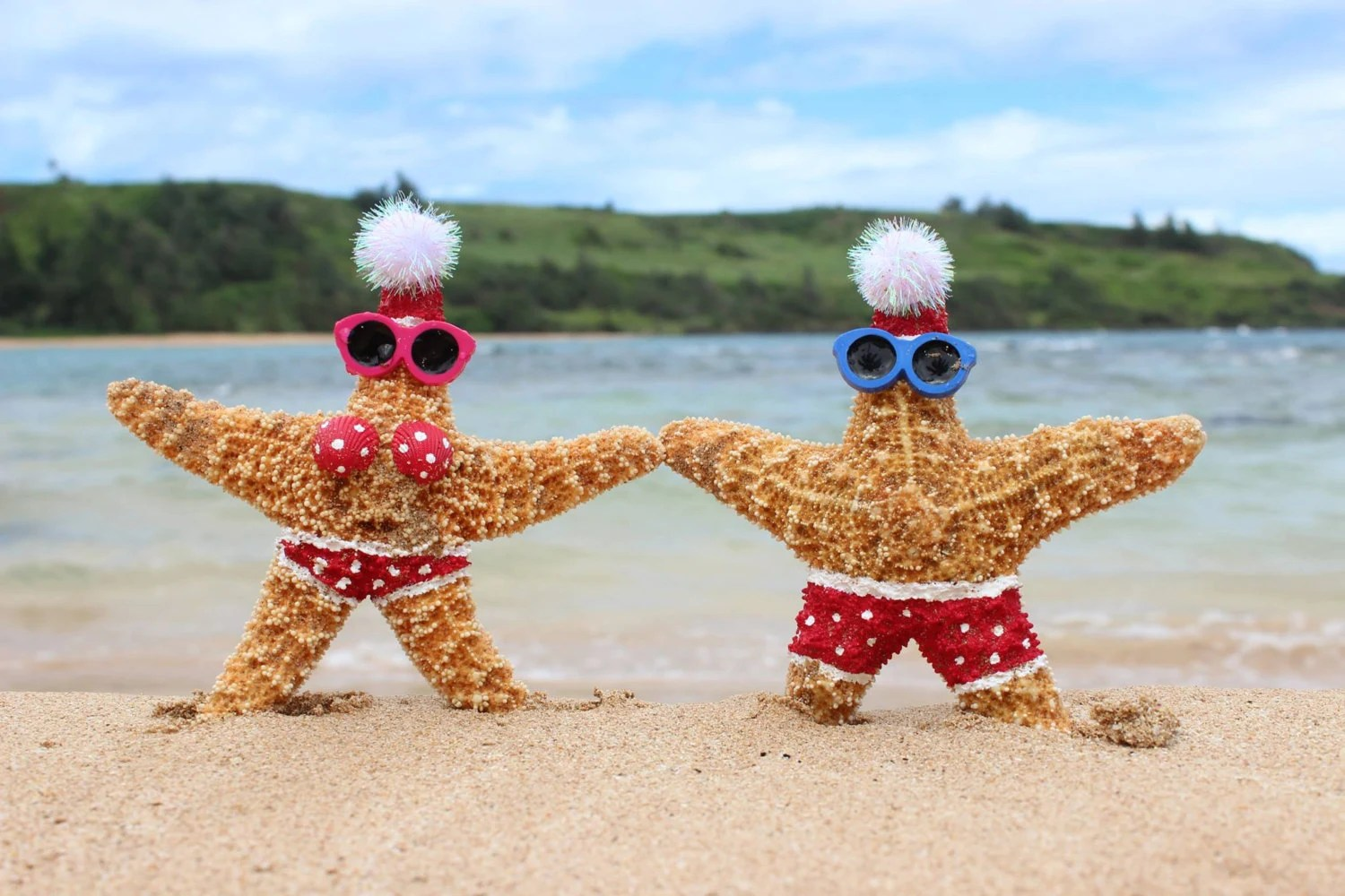 Best Beach Christmas Ornament Beach Decor Starfish By Cereusart This Month
