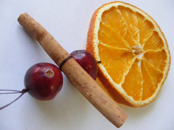Best Dried Orange Cranberry And Cinnamon Stick Holiday This Month