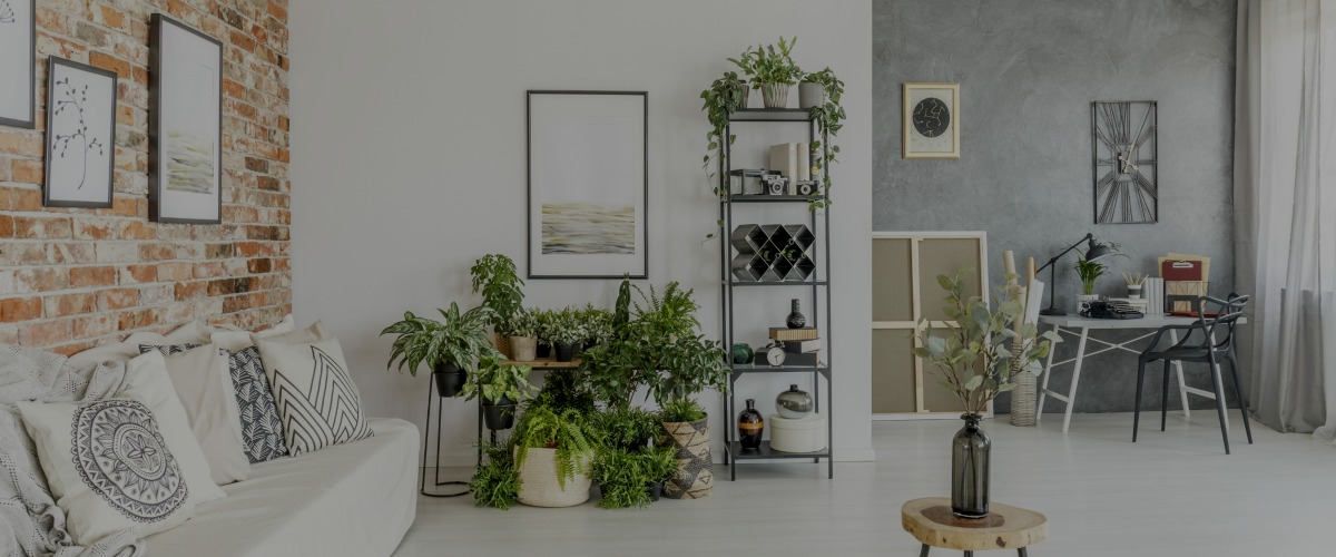 Best Interior Decorating Certification Vs Degree Which Is This Month