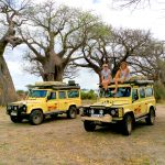 Camp and Lodge Safaris Tanzania