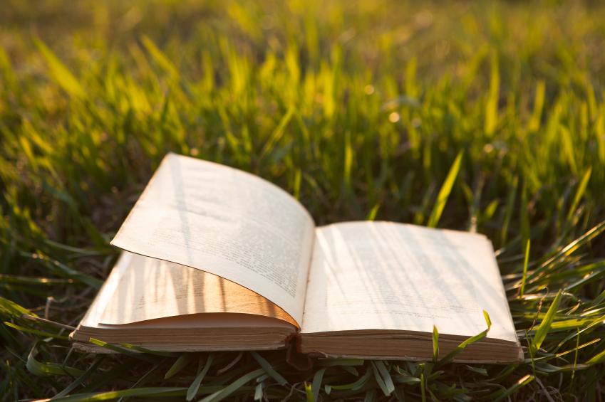 Stanford Humanities Professors Share Summer Reading Picks