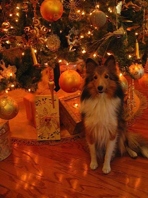 Christmas Lights Coloring