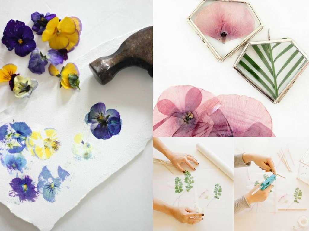 11 DIY Pressed Flower Projects Perfect for Spring   She Tried What 11 DIY Pressed Flower Projects Perfect for Spring
