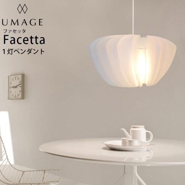 designer pendant light # 17