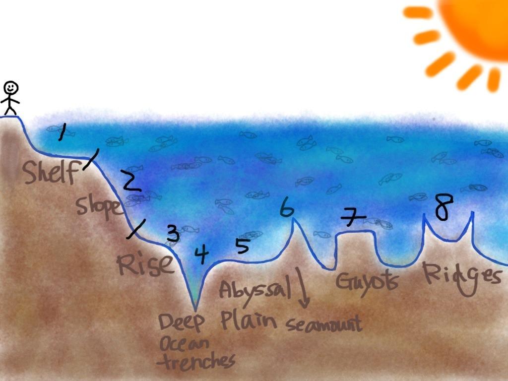 Features Ocean Floor Project 5th Grade