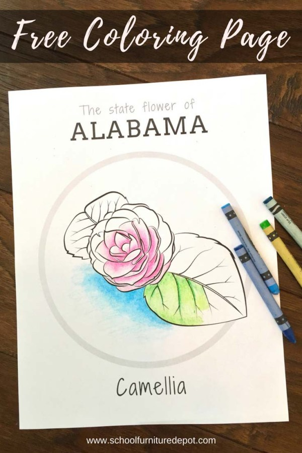 sweet pea coloring pages # 67