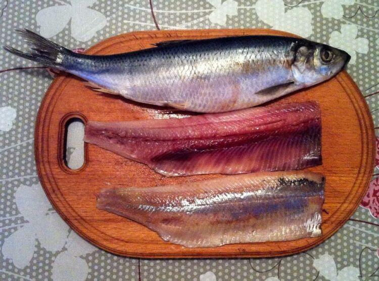 cara memotong ikan haring