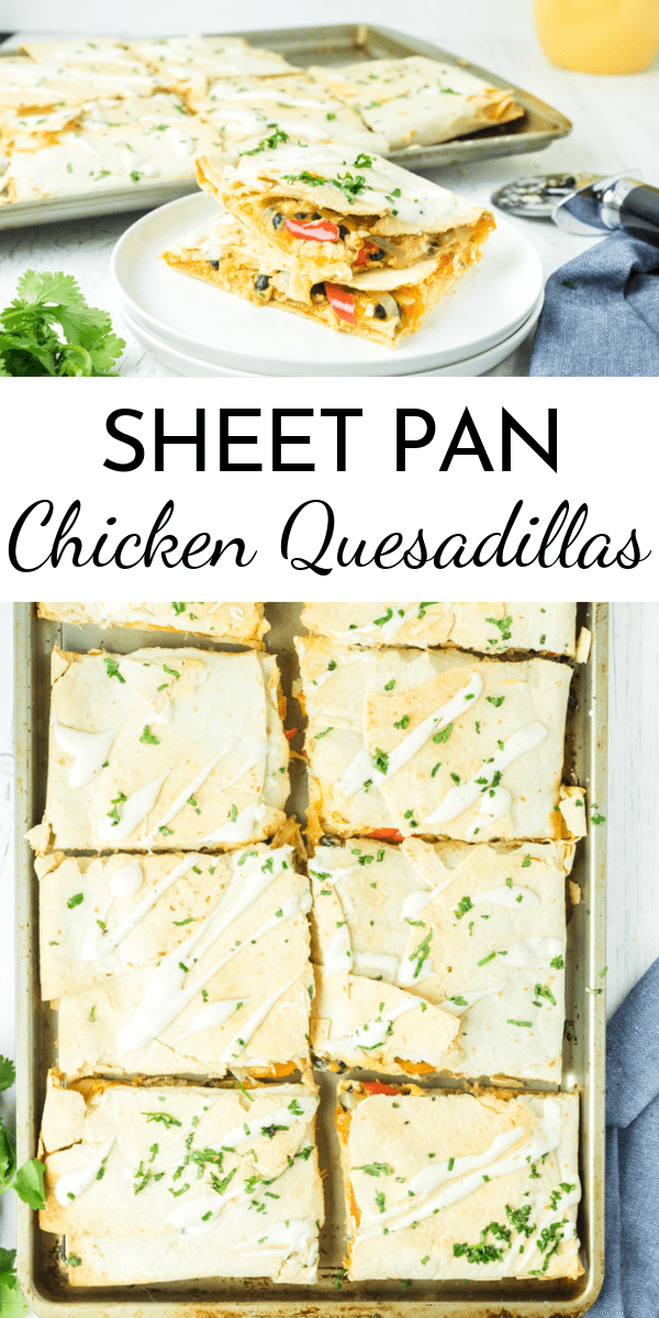 Dinner is ready fast with these Sheet Pan Chicken Quesadillas. Try them Buffalo style or swap in your own favorite flavors! via @nmburk