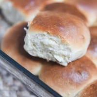yeast dinner roll