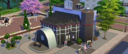 The Sims 4 Photography Skill Guide   Sims Online Photography store in The Sims 4 Get to Work