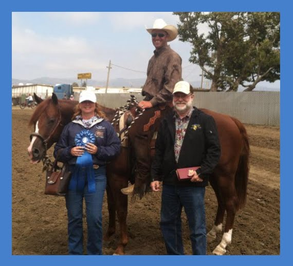 Trainers Horse California Reined Cow