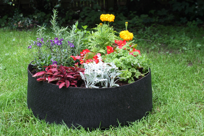 Raised Vegetable Garden Images