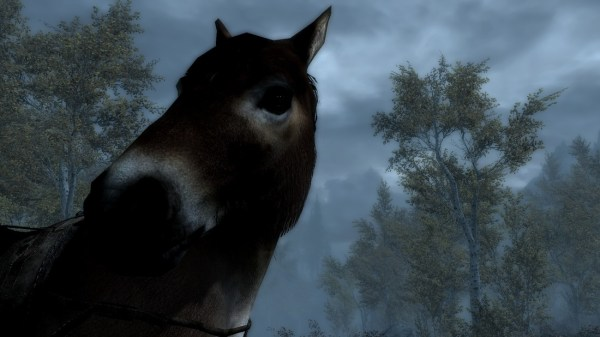 realistic horse breeds # 15