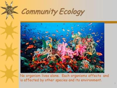 Community Ecology Chapter ppt download