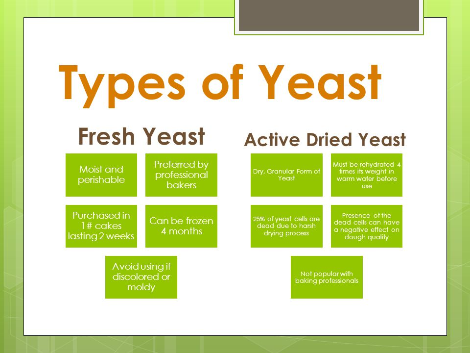 What Fresh Bakers Yeast