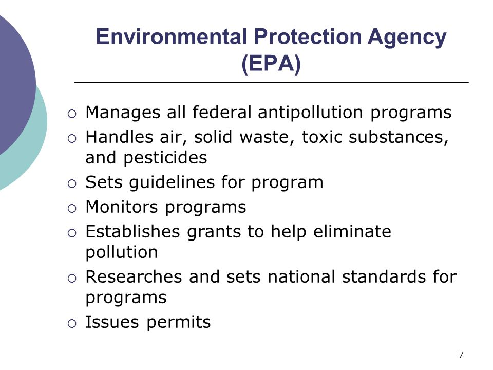 Executive Protection Guidelines