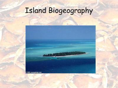 Island biogeography: lecture topics - ppt video online ...