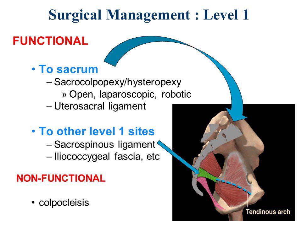 Uterosacral Ligament Pain