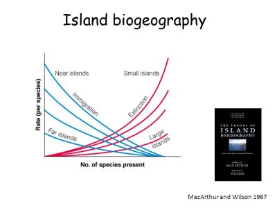 Galapagos Islands. - ppt download