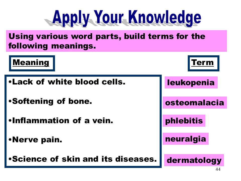 medical terminology word breakdown