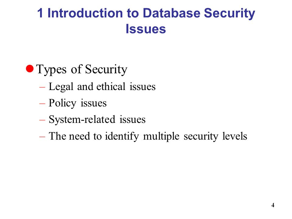 Database Security Issues