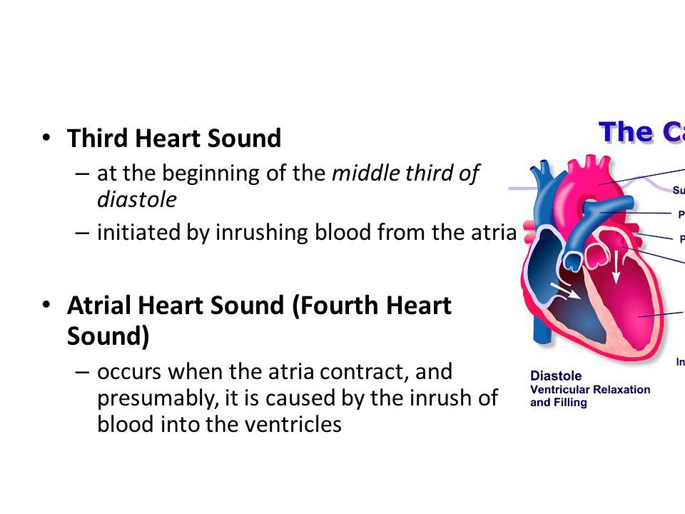 Fourth Heart Sound