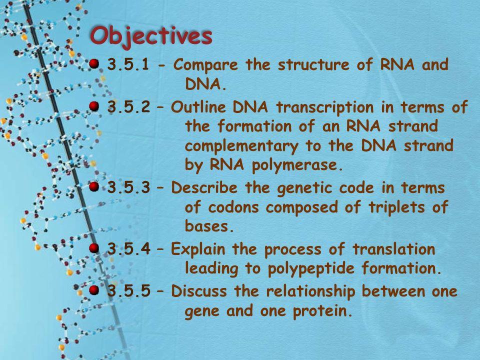 Describe Relationship Between Gene And Dna