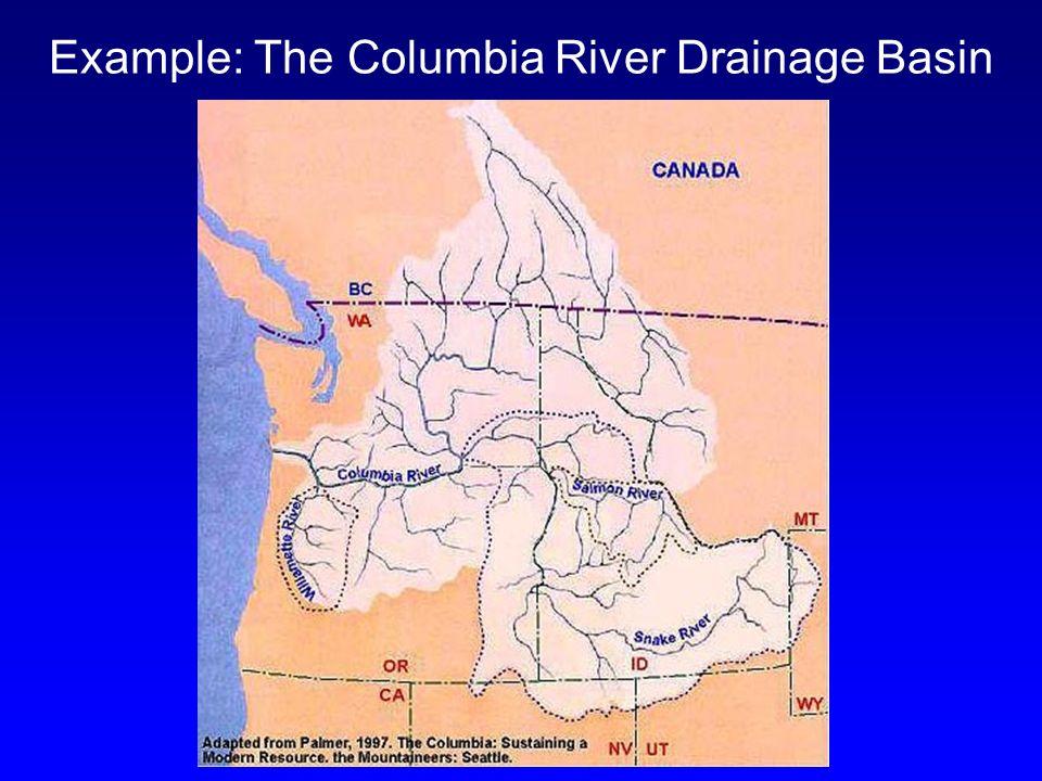 Examples Drainage Basin