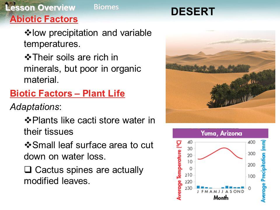 Sahara Are And Abiotic Factors What Some Desert Biotic