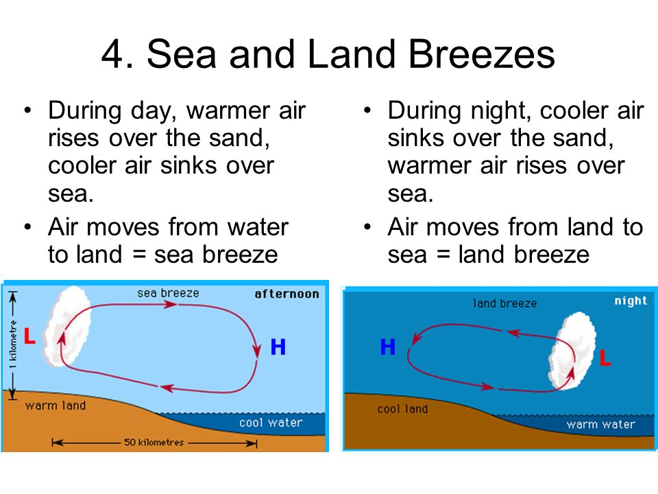 Land And Sea Breezes Diagram