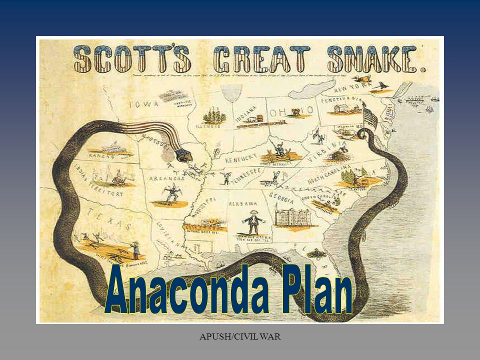 what was the anaconda plan
