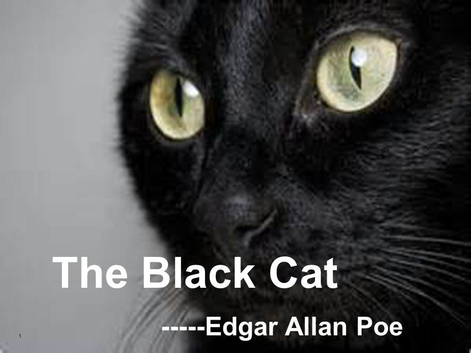The Black Cat By Edgar Allan Poe Theme