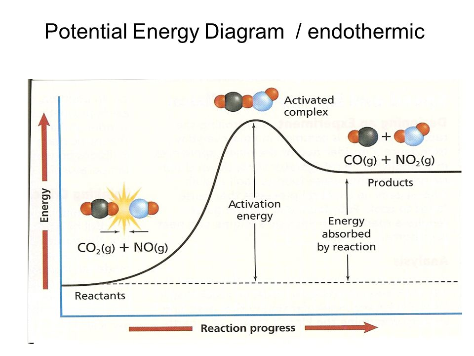 Diagram For Endothermic Reaction Potential Energy