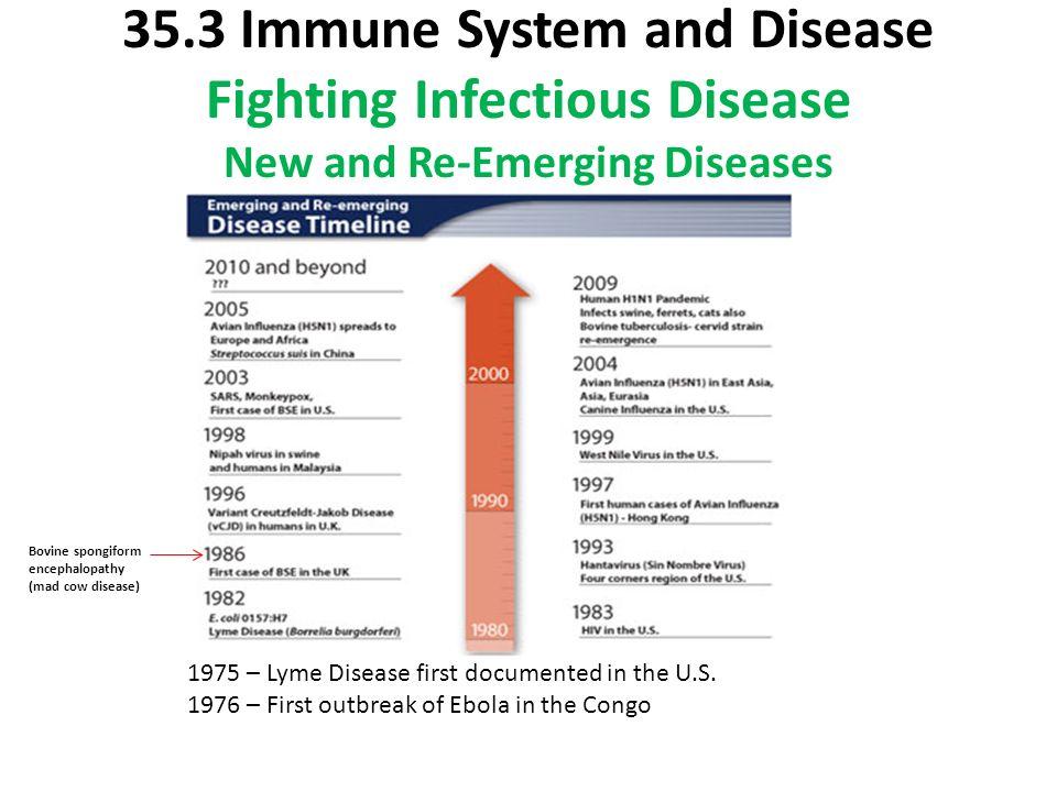 System Fighting Immune Virus