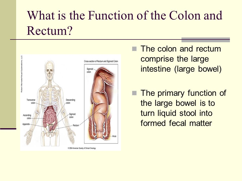 And Their Colon Function