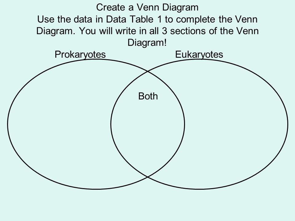 prokaryote and eukaryote venn diagram