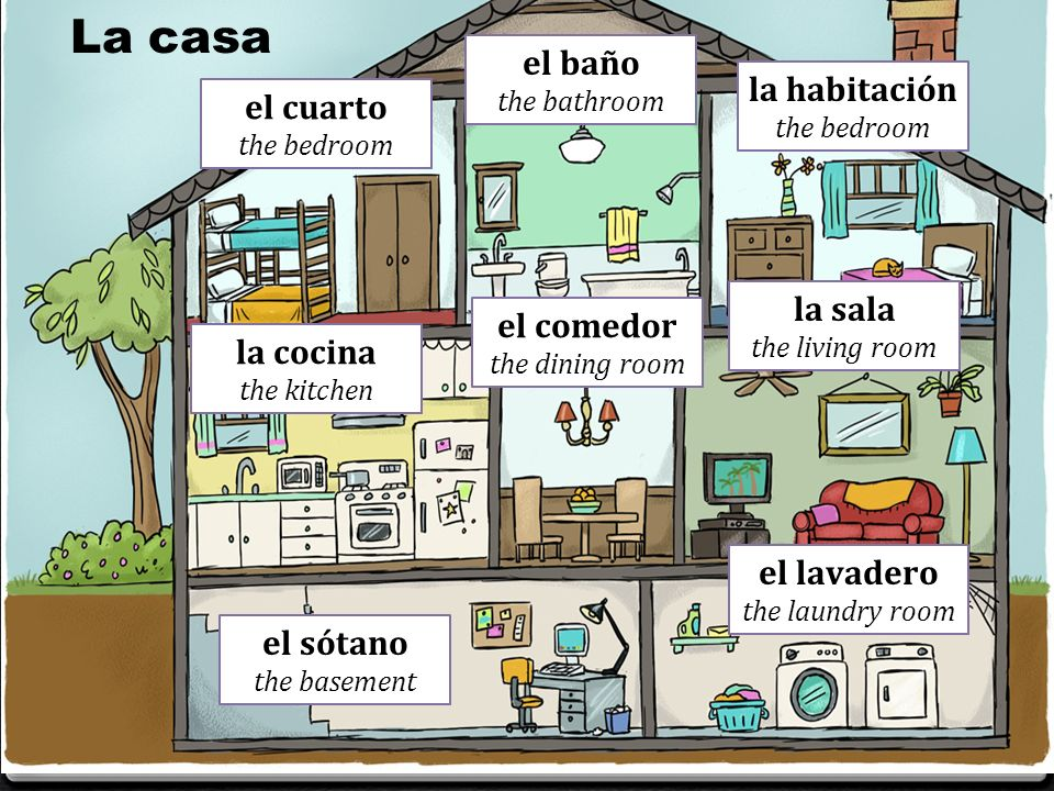 Sofa Cama En Ingles