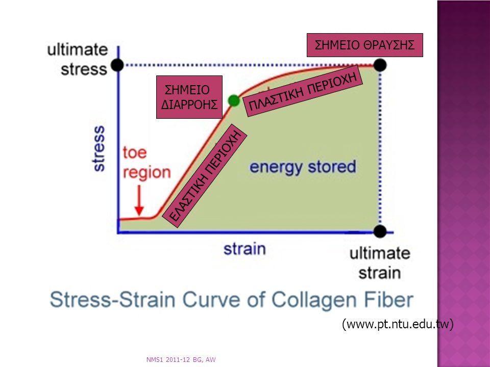 Strain Stress Curve Ligament
