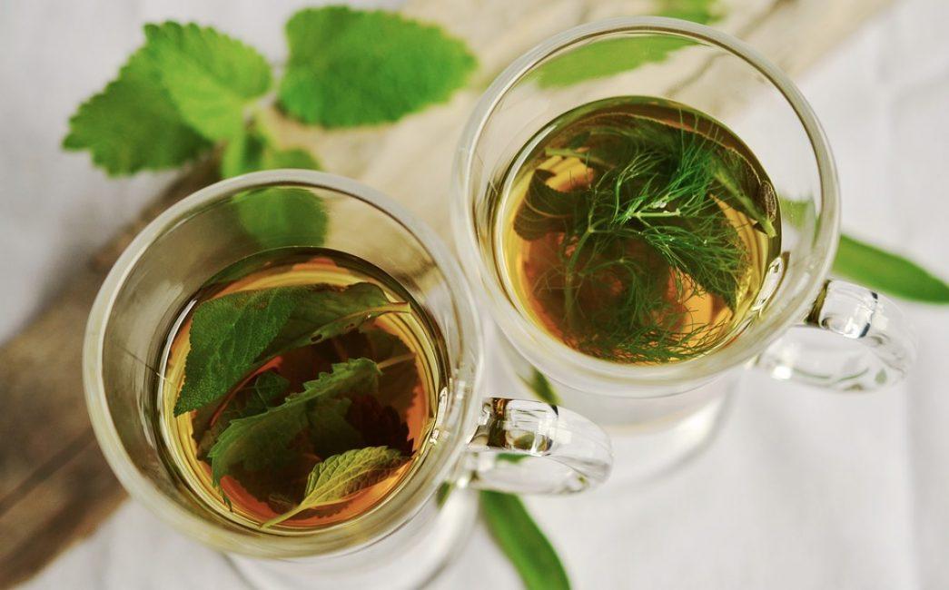 Вкусные и полезные травяные отвары от кашля можно приготовить в домашних условиях