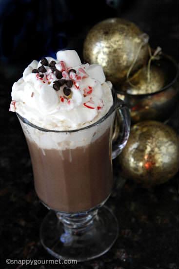 Homemade Hot Chocolate Mix Recipe   snappygourmet.com