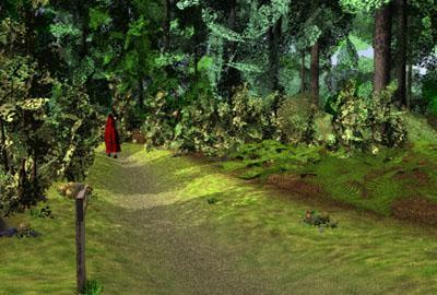 Forest Foret Sophie S Maze