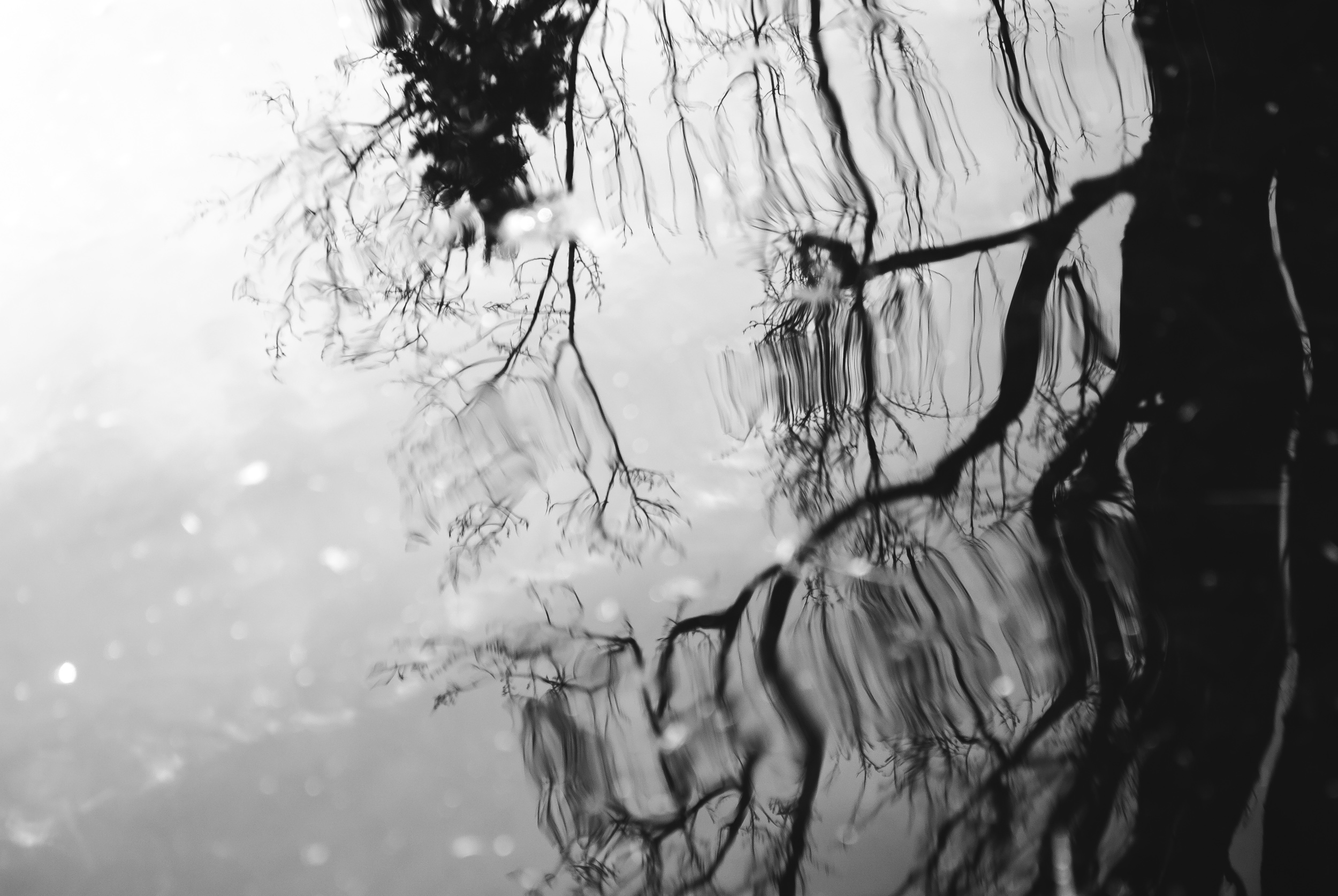 Sophie Bernard Photography - Serie - In Dark Waters