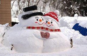 来自雪的雕塑