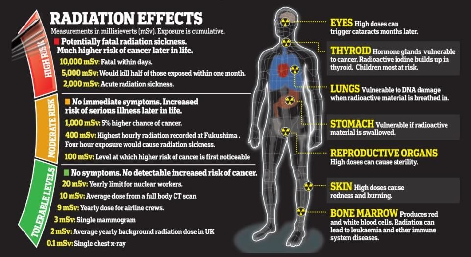 Effects Radiation Poisoning