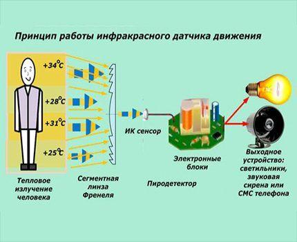 Prinsip pengoperasian sensor gerak