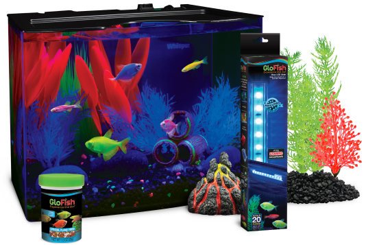 GloFish®. The most colorful pets for the most dazzling ...