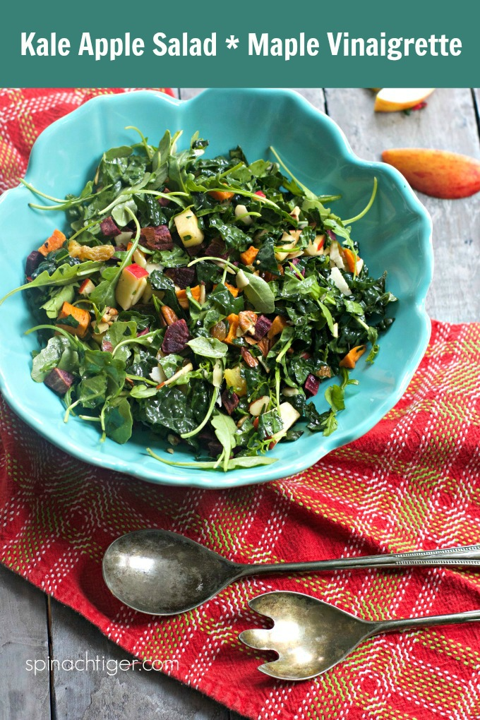 Kale and apple salad with maple vinaigrette ushers in fall and works through winter. #kalesalad #kale #salad #maplevinaigrette #spinachtiger #potlucksalad #potluckideas via @angelaroberts