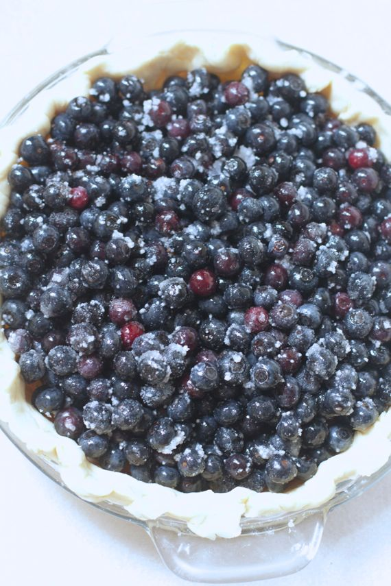Blueberry Crumb Pie with Freshly Picked Blueberries 2 by Angela Roberts