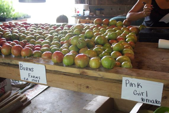 Burns Farm Produce Stand Open for the Summer10  by Angela Roberts