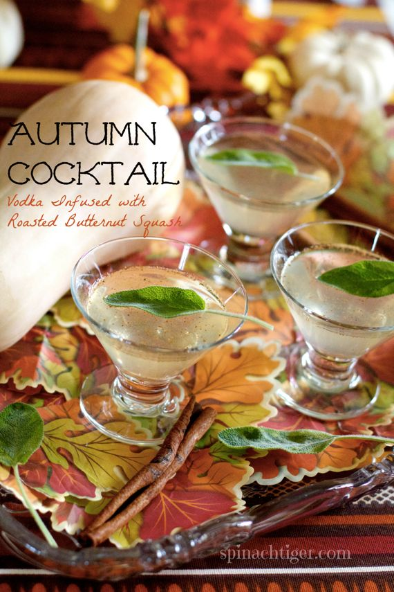 Autumn Cocktail by Angela Roberts